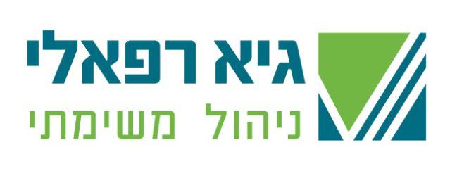 עיצוב לוגו למנהל פרוייקטים כלכליים