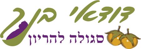 לוגו סגולה להריון