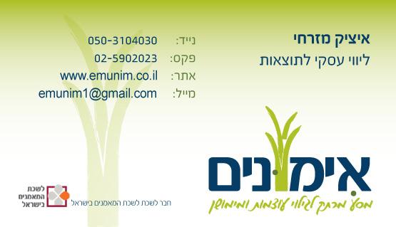 כרטיס ביקור ליווי עסקי