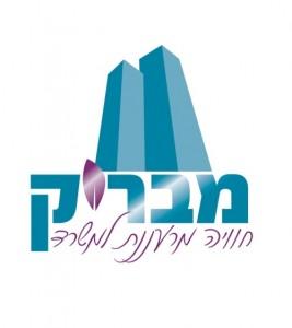 עיצוב לוגו מבריק