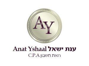 עיצוב לוגו לרואת חשבון